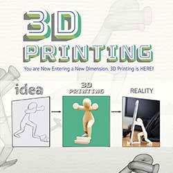 247101 - 3D Printing