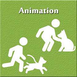 247101 - Animation