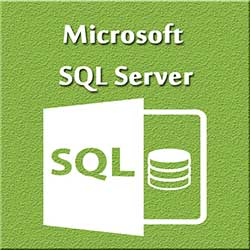 247101 - Graphic Design, Printing & Software Development - Microsoft SQL Server