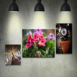 247101 - Graphic Design, Printing & Software Development - Mounted Canvas