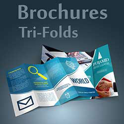 247101 - Graphic Design, Printing & Software Development - Brochures - Tri-Folds