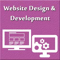 247101 - Website Design and Development