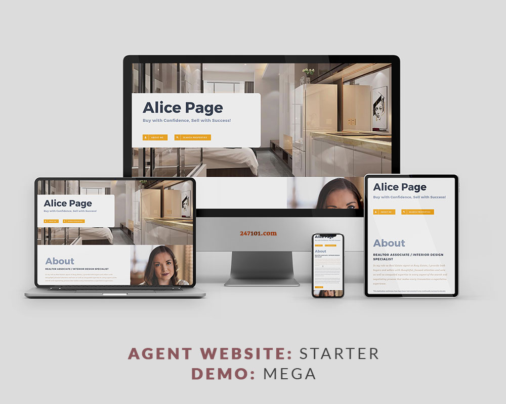 247101 Real Estate Website - Mega